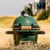 """Керамічний гриль Big Green Egg """"mini"""" 18825"""